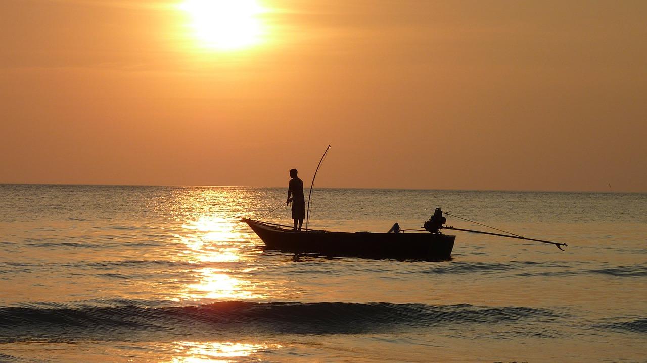釣りの画像